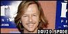 Spade, David